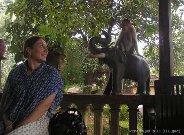 Ашрам Гаруда-гуха, где очень много диких обезьян!