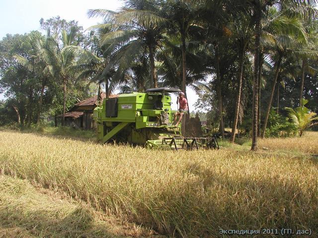 комбайн, новшество в сборе урожая