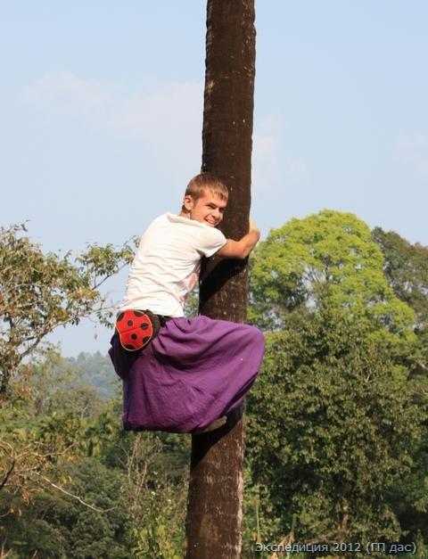 Павел - на роли собирателя кокосов