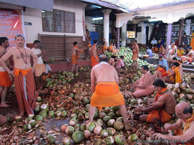 По дороге заехали в храм Угра-Нрисимхи в Мульки, и оказалось, что там великолепный праздник - день прихода Божества Нрисимхи в  сию благую обитель. Нам необычайно повезло, ведь это самый большой местный праздник! В этот день Нрисимху омывают с утра до вечера кокосовой водой. Брахманы жрецы очищают тысячи и тысячи кокосов, дабы охладить Господа с жарким темпераментом!
