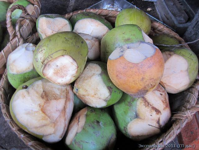 Свежие кокосы в корзине перед алтарем, готовые для вскрытия