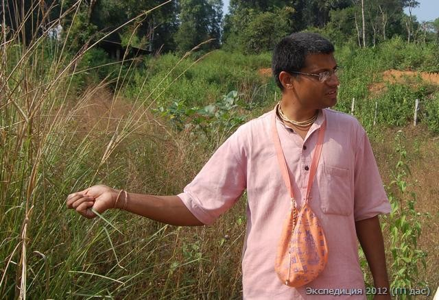 Бхарат-чандра дас, менеджер проекта, показал нам угодья, богатые Манго и прочими посадками