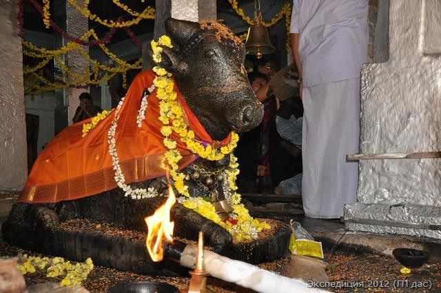Нанди, священный бык Шивы