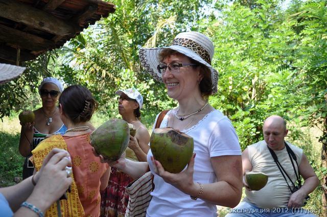 Дабба - питьевые кокосы