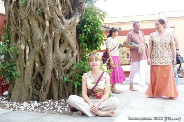 Обошли растущее у входя священное дерево Пипал, и заходим внутрь...